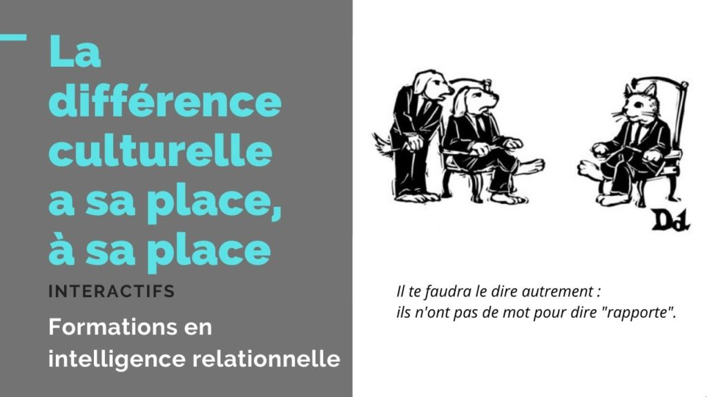 difference culturelle, magazine d'interactifs